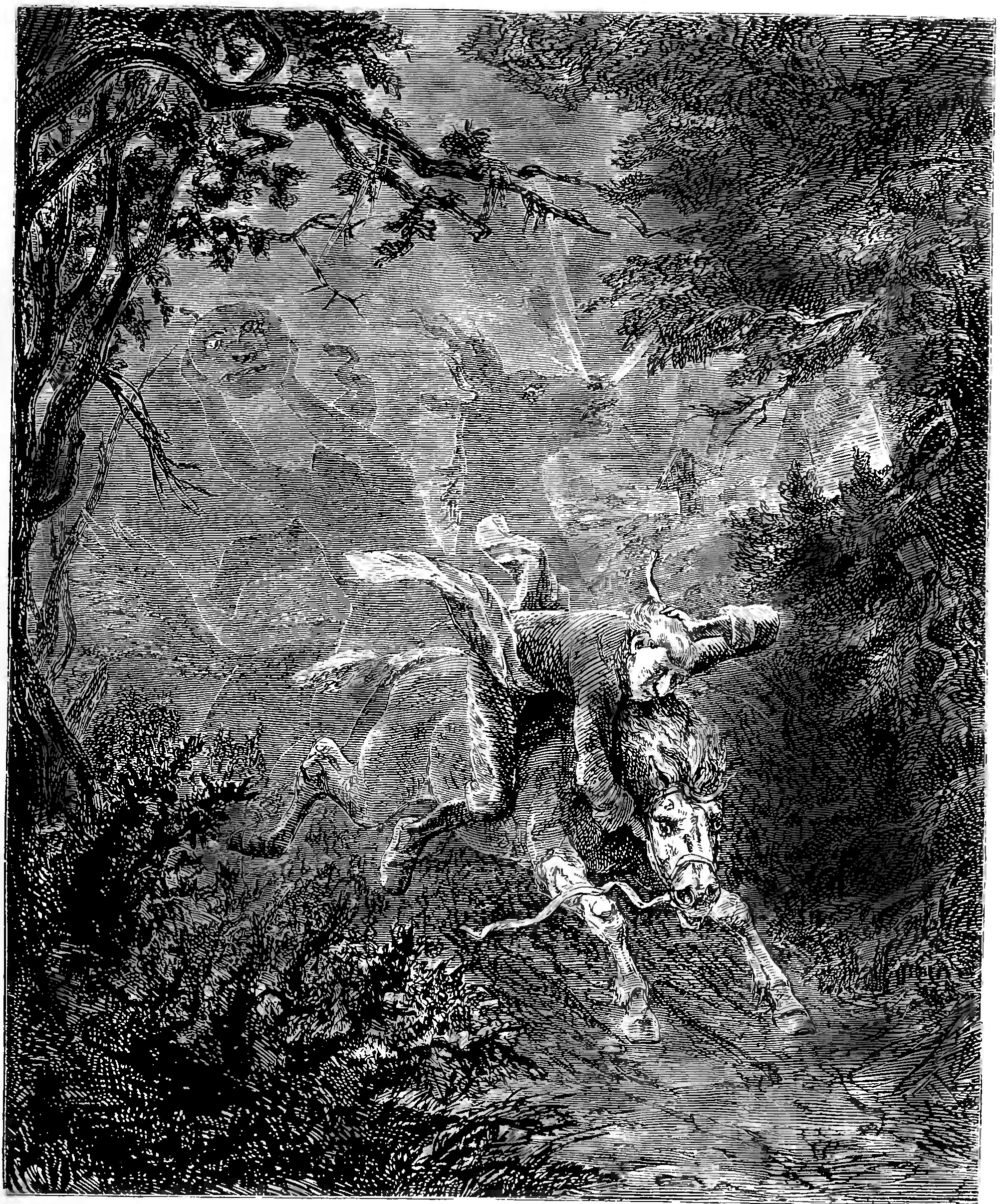 a critique of the landscape and theme in the legend of sleepy hollow The legend of the sleepy hollow was published in 1864 as a separate illustrated volume for the first time, and there have been dozens of editions since the story takes place in sleepy hollow, a sung rural valley near tarry town in the catskill mountains in new york.